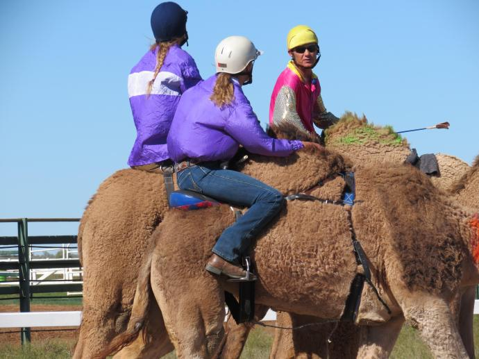 camel races winton pc sx40 050_4000x3000
